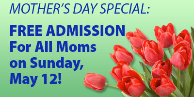 Mothers Day Special - Moms Free on May 12